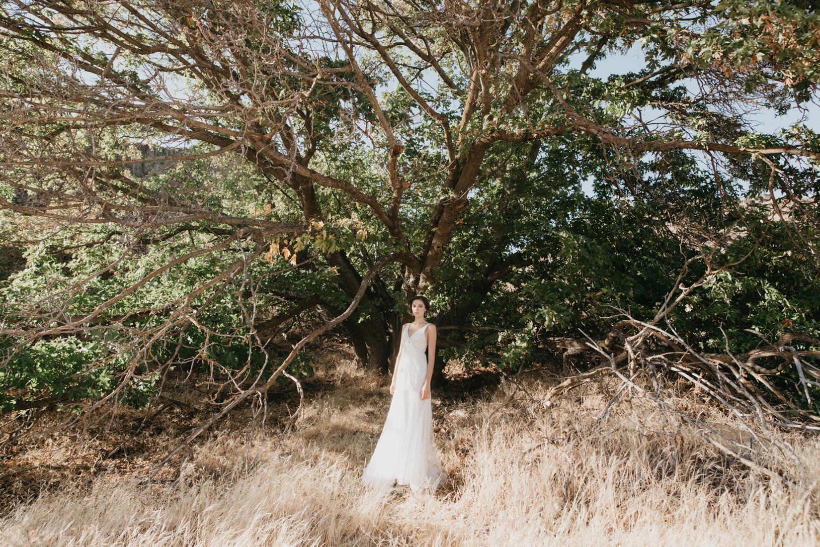 Bride in beautiful gown stands underneath massive tree in Oregon desert