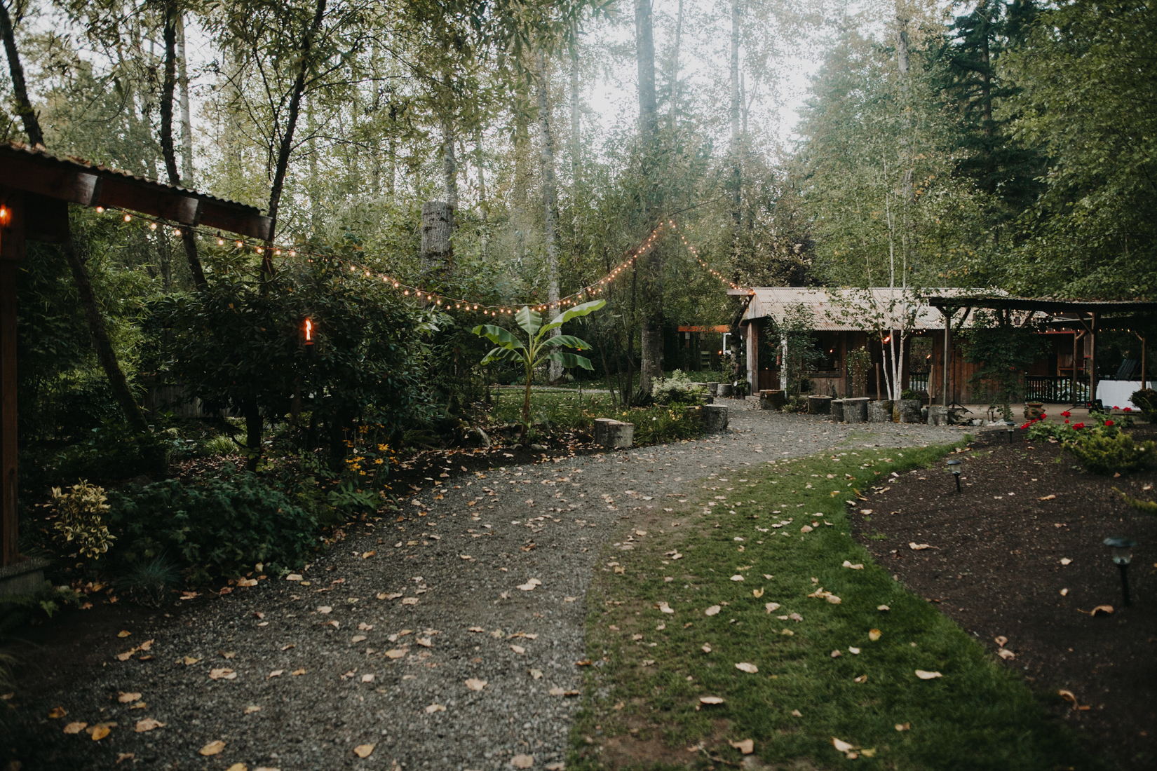 Washington wedding in the fall