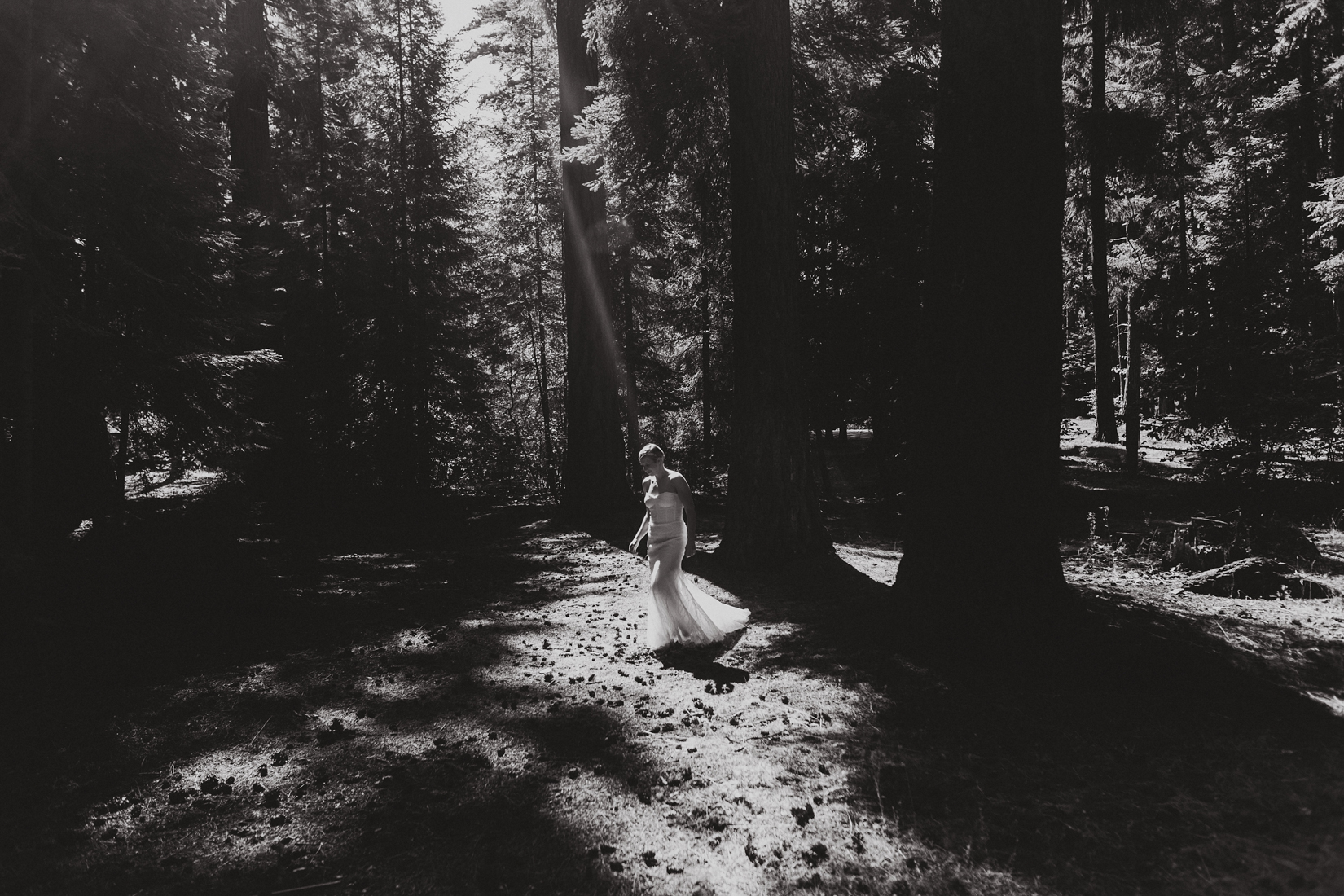 wedding first look in the woods near sisters oregon