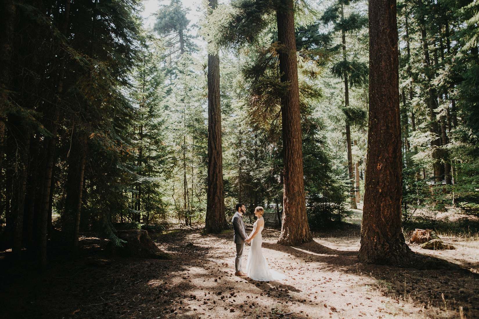 Camping wedding in the woods