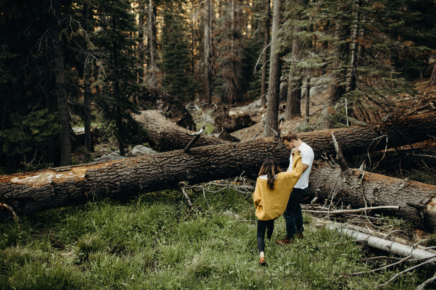 Yosemite Engagement Photos